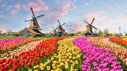 Find cheap flights from Chennai to North Holland