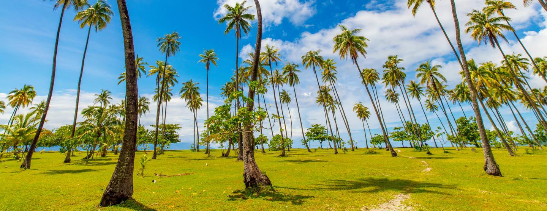 French Polynesia Car Rental