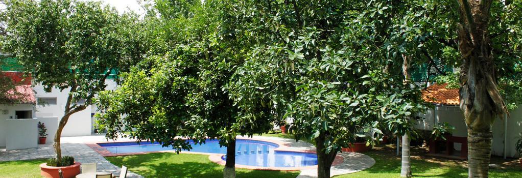 Aurea Hotel and Suites - Guadalajara - Pool