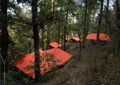 Ayar Jungle Camp - Nainital - Attractions