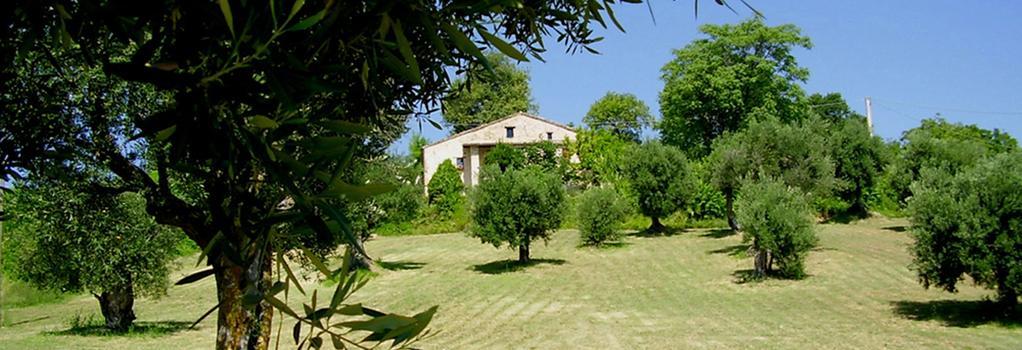 Il Sorger Del Sole - Cingoli - Outdoor view