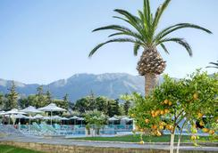 Vardis Olive Garden - Georgioupoli - Pool