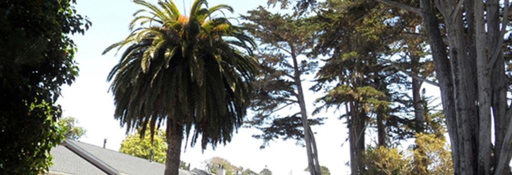 Butterfly Grove Inn - Pacific Grove - Building